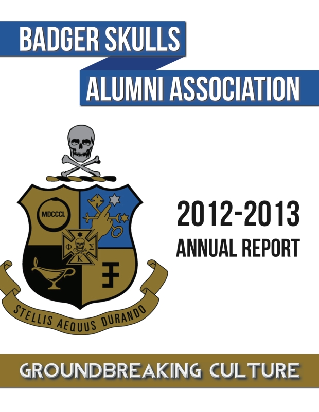 2013 BSAA Report - Version 2